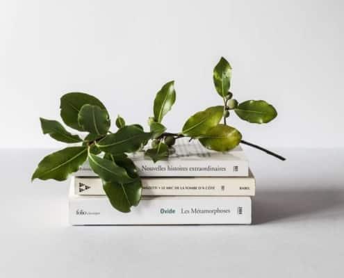 le but de la prepa hec ece ecs ipecom paris : livres et feuilles d'olivier