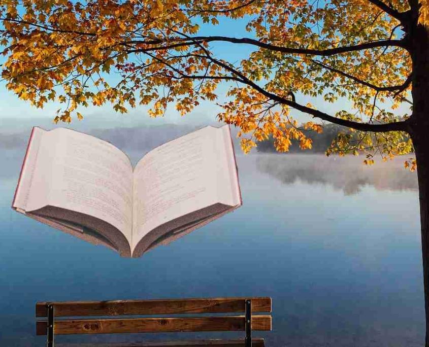 paysage d'automne et livre stage de la toussaint