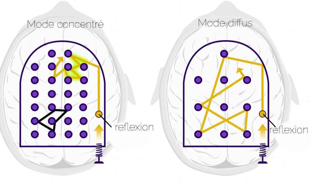 le flipper neuronal de Barbara Oakley